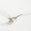 Snowy Owl White 2