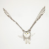 Snowy Owl V Wing 2