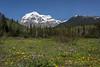 Mt Robson sm