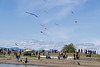 Great day for kite flying, Garry Point Park, Steveston, British Columbia