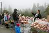"""Foggy day at the apple festival, Vancouver, BC, Canada<br /> <br /> The apple festival is hugely popular, with people carting away huge boxes of apples, dried apples, apple cider and apple trees.  I bought 3 apple trees for my garden - so in 3 years time I'll have my own apples!<br /> <br /> Other photos of the apple festival, including one of a Morris Dancer can be seen here: <a href=""""http://goo.gl/jbeQbB"""">http://goo.gl/jbeQbB</a><br /> <br /> 22/11/13  <a href=""""http://www.allenfotwild.com"""">http://www.allenfotwild.com</a>"""