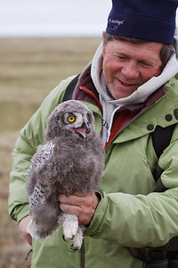 Denver Holt with Snowy Owl Chick, Dan Cox photo