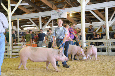 Ryan Frantz uses a pole to control his pig during the Jr. Showmanship competition for ages 8-11 at the Beaver Springs Fair on Monday morning.
