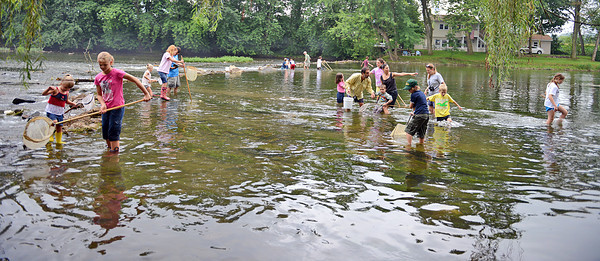 Amanda August/For The Daily Item Participants at the Ecology and Outreach Program, held by the Lower Penns Creek Watershed Association, wade in Penns Creek looking for insects and fish in New Berlin on Saturday morning. Kids were invited to collect insect and fish specimens from the creek and then to examine them more closely under the microscopes.