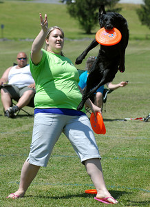Lucy grabs one of the frisbees Susan Heckman of Middleburg sent in the air in the free-style competition Saturday during Lucy's Luau at Middleburg Fireman's Fairgrounds.