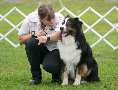 "Laura Hirth of Harleysville, Pa. directs Larry Bowa during the Utility ""B"" obedience exersize Saturday Aug. 25, 2012 during the 42nd All-Breed Dog Show and Obedience  Middleburg Fireman's Fairgrounds."