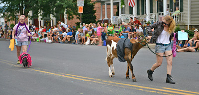 Amanda August/For The Daily Item A pig and calf participate in the Middleburg Fireman's Carnival on Thursday night.
