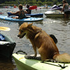 SPI Canoe and Kayak River Paddle :