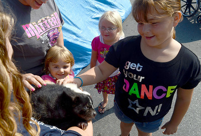Sisters, Kierstyn, 4, Kiarra, 5, and Nahava Neilson, 9, of Selinsgrove meet Tazer, a skunk from Ashburns Animals on a Mission, during the 34th Annual Market Street Festival in Selinsgrove Saturday Sept. 22, 2012.