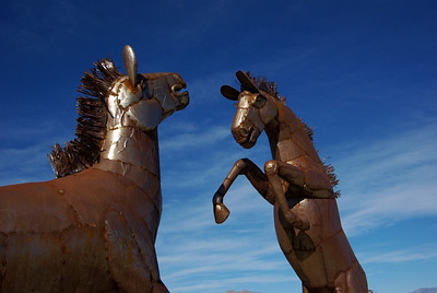 Borrego Springs Sculptures & Off Roading - Jan 2009