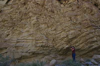 Anza Borrego - Sandstone Canyon & Cactus Garden 3/27/10