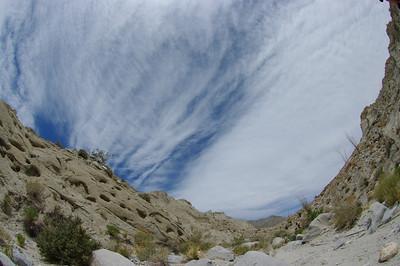 Hiking up a side canyon.
