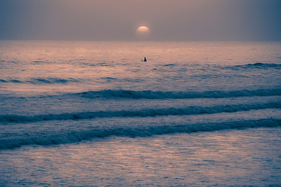 Lonely surfer at sunset. Pink and blue.