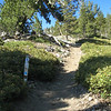 At the PCT junction with the spur trail to Throop