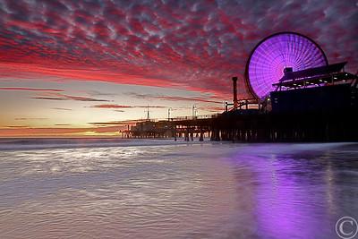 Spins Purple