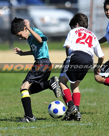 Northport Fleet vs West Babylon Tazmanian Devils U12 Gold