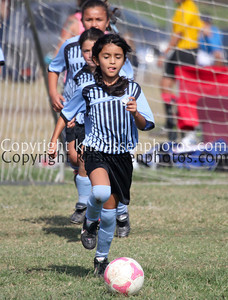 Division Girls U10-5295