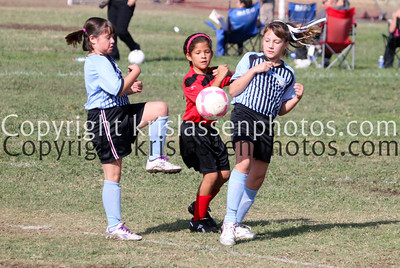 Division Girls U10-5263