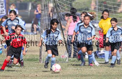 Division Girls U10-5291