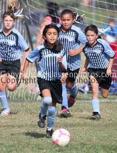 Division Girls U10-5293