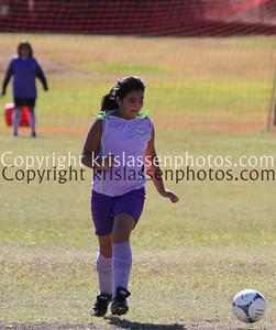 Division Girls U12-2217