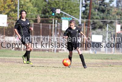 Division Girls U14-0006