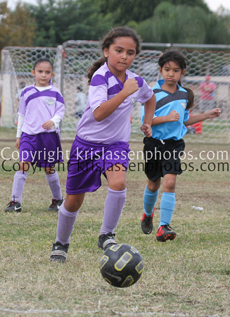 Division Girls U8-1349