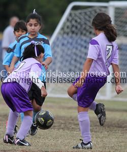Division Girls U8-1369