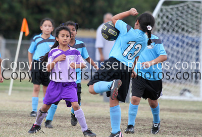 Division Girls U8-1366
