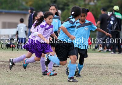 Division Girls U8-1337