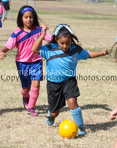 2012 WAYS-Division Girls U8-All Teams