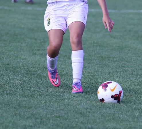 Amherst JV Girls VS Berea
