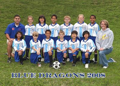 Blue Dragons 3-31