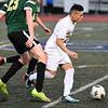 Boys Soccer Yorktown vs South Lakes-6