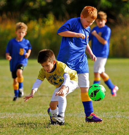 NPD Soccer, Sept 28, 2013