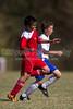 98 Twins Red vs NTFC Surry Strikeforce (U12) Saturday, October 16, 2010 at BB&T Soccer Park Advance, NC (file 123946_BV0H2124_1D4)