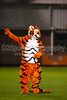 Clemson Lady Tigers vs College of Charleston Cougars Women's Soccer