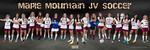 Girls Soccer Poster 2013 JV 12x36