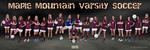 Girls Soccer Poster 2013 Varsity 12x36