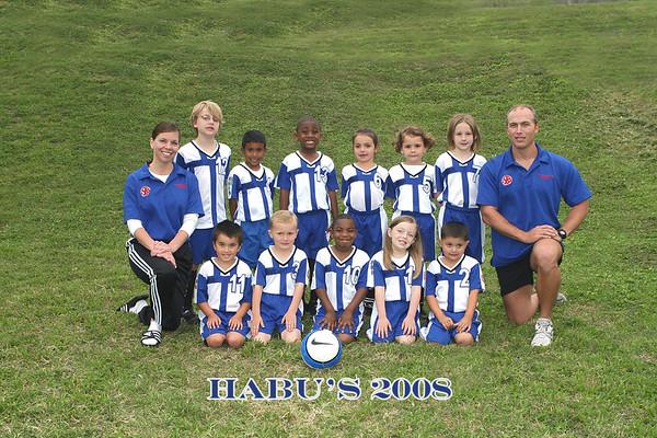 Habu's 4-8