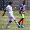 Soccer - A C Steere Park 081515 024