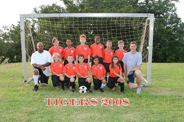 Tigers 10-14