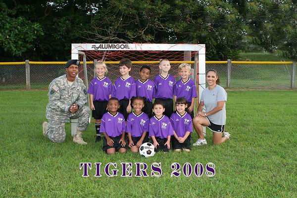 Tigers 11-13-08