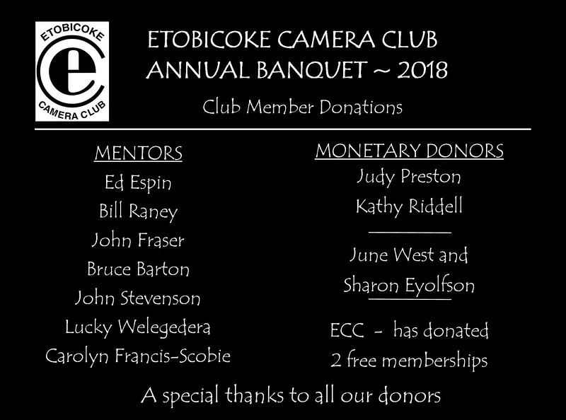 ECC Banquet Donor Slides 2018 v3 FINAL Pg 3c