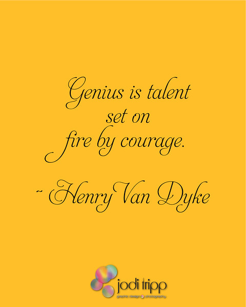 Genius is talent set on fire by courage.  ~Henry Van Dyke