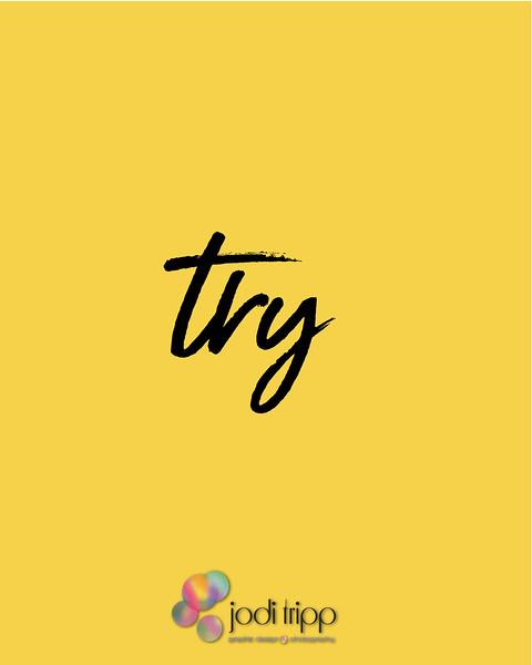 Jodi Tripp _ Try