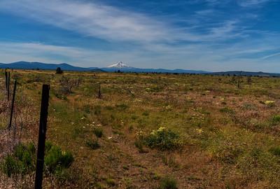 Fences: Mt Hood on the Range | Warm Springs, Oregon