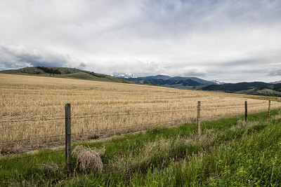 Fences: Tobacco Mountain Farmland, Montana