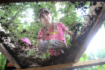 Kendra Stark, 14, Sunbury, sifts through dirt while looking for artifacts at the Fort Halifax site on Wednesday during a Archeology Camp in conjunction with the Ned Smith Center.