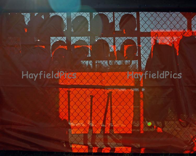 Hayfield-4007